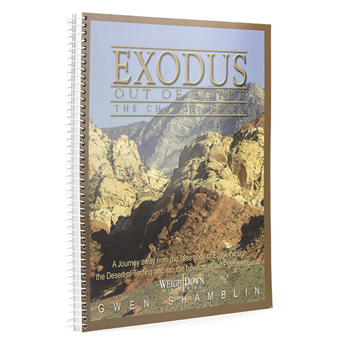 Exodus Out of Egypt - Change Series Workbook