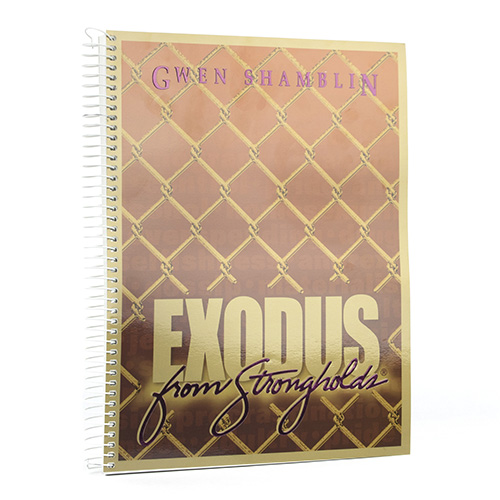 Exodus From Strongholds Workbook