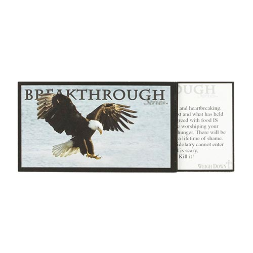 The Breakthrough Series Truth Cards